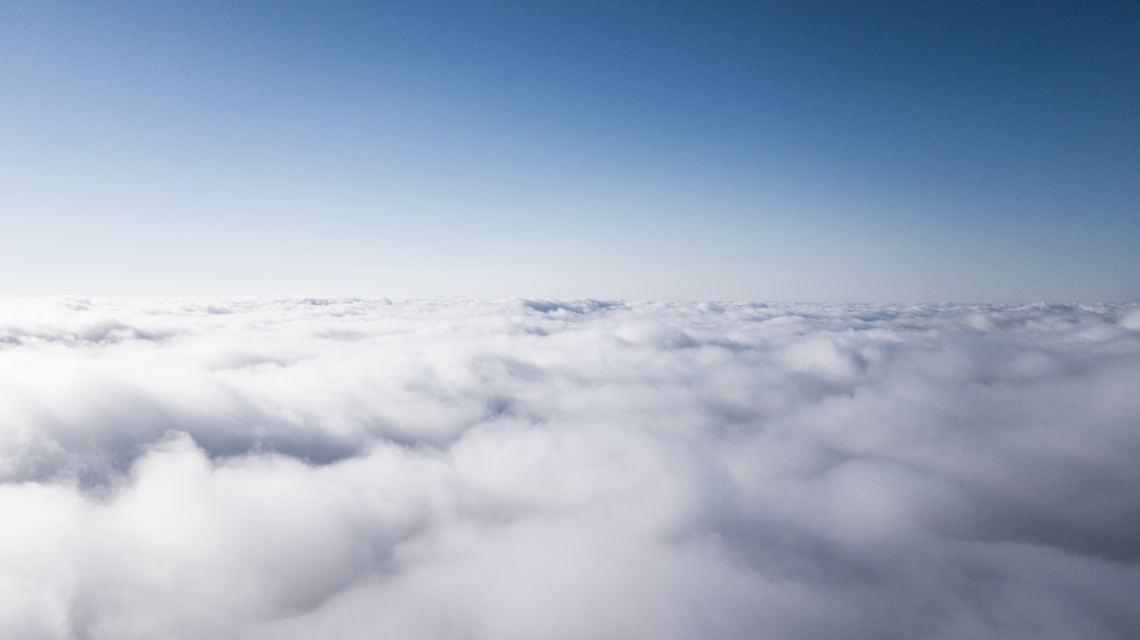 Cloud contract management software can revolutionize your company.